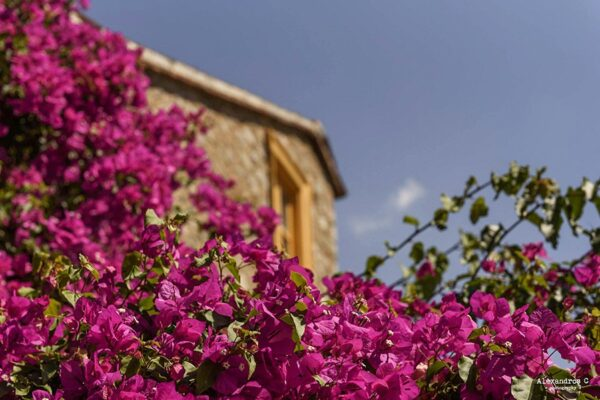 Full day photography tour in Nafplio